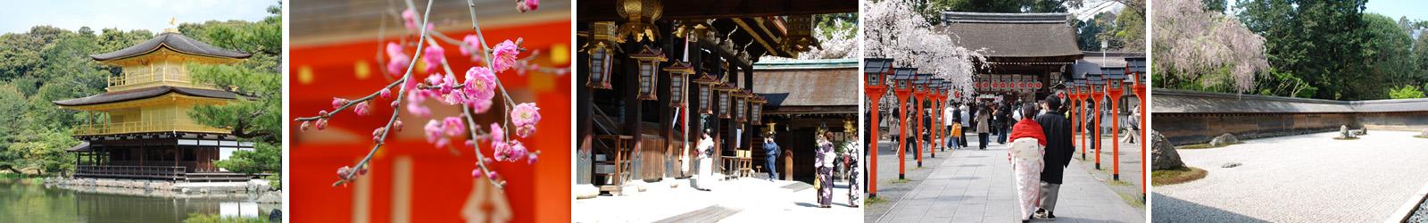 UmeSakura周辺の観光名所