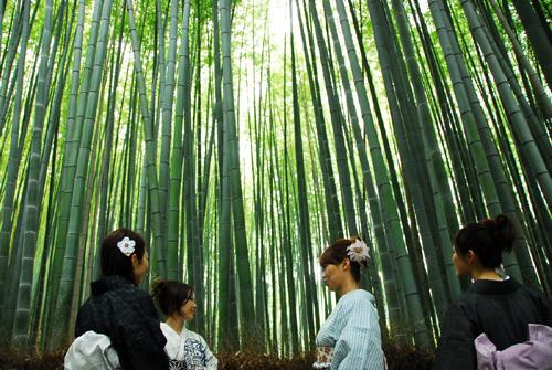 arashi-n